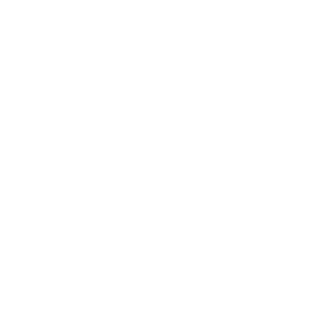 ankle foot bones graphic link to resources